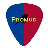 Promus Webdesign